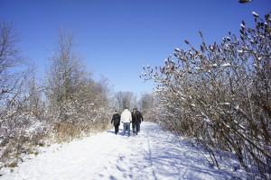 Winter visit, November 2013.